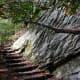 Duggar's Trail