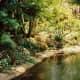 florida-vacation-walt-disney-world-discovery-island