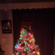 This is what my tree looked like all set up.