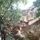 the-forestiere-underground-gardens-of-fresno