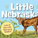 Little Nebraska (Little State) Board book by Rajean Luebs Shepherd