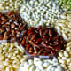 Different varieties of rice