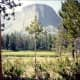 Mount Haynes - Elevation at 8,000+ feet
