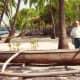 Old Hawaiian canoe & my hubby at Place of Refuge on Big Island of Hawaii