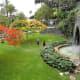 Lush greenery of Parque Doramas.