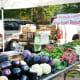 fabulous-memorial-villages-farmers-market-houston