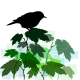 bird in a tree clipart
