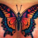 great-butterfly-tattoo-ideas-for-women-butterfly-tattoo-images-and-designs