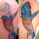 The bird's wing in a dark shade of blue has covered the old tattoo completely.