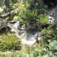 Looking down on Jardin Botanico.
