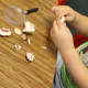 Dissecting mushrooms