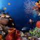 The Reason You Go Scuba Diving In Costa Rica