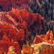 Autumn colors in SW Utah...Cedar Breaks National Monument from the 10,460-foot rim