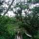 The bamboo flooring of the Twin Hanging Bridge.