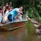 Cajun Encounters Swamp Tours