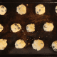 Form dough into small balls and flatten into a cookie shape. Place on a greased cookie sheet. Bake for 7-8 minutes.