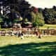 Strybing Arboretum Photo