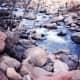 sedonas-playground-oak-creek-canyon-slide-rock