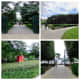 Sculpture Garden in Washington D.C.
