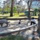 Cute playground areas