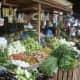 Vegetable Market, Philippines