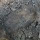 Alleged Bigfoot Footprint