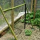 Bamboo and wire cucumber trellis