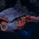"Tyranid Battle Cruiser - ""Bio Tentacles Devourer"" - [Behemoth Sub-Faction]"