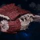 """Tyranid Battle Cruiser - """"Corrosive Tentacles Devourer"""" - [Kraken Sub-Faction]"""