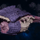 "Tyranid Battle Cruiser - ""Corrosive Tentacles Devourer"" - [Leviathan Sub-Faction]"