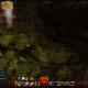Wildflame Caverns Vista
