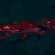 Drukhari Raider Light Cruiser - Bladed Lotus - [Flayed Skull Sub-Faction]