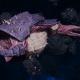 "Tyranid Frigate - ""Bio Projectile Kraken"" - [Leviathan Sub-Faction]"