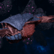 "Tyranid Frigate - ""Corrosive Kraken"" - [Behemoth Sub-Faction]"