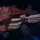 "Tyranid Cruiser - ""Corrosive Infestation Razorfiend"" - [Kraken Sub-Faction]"