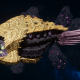 "Tyranid Cruiser - ""Bio Acid Razorfiend"" - [Jormungandr Sub-Faction]"
