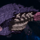 "Tyranid Cruiser - ""Razorfiend"" - [Leviathan Sub-Faction]"