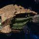 "Tyranid Cruiser - ""Bio Infestation Razorfiend"" - [Gorgon Sub-Faction]"