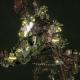 Ork Roks - [Blood Axes Sub-Faction]