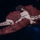 "Tyranid Battleship - ""Hiveship"" - [Kraken Sub-Faction]"