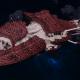 """Tyranid Battleship - """"Bio Tentacles Hiveship"""" - [Kraken Sub-Faction]"""