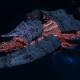 "Tyranid Battleship - ""Acid Infestation Hiveship"" - [Behemoth Sub-Faction]"