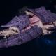 "Tyranid Battleship - ""Bio Acid Hiveship"" - [Leviathan Sub-Faction]"