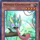 Masked Chameleon