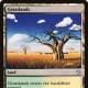 Grasslands mtg