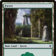 Throne of Eldraine Forest