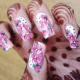 Full Nail Water Slide Decal Nail Art