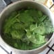 Spinach is briefly blanched in salted water