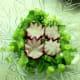 Pretty radishes