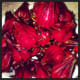 Beautiful Rosella Fruits